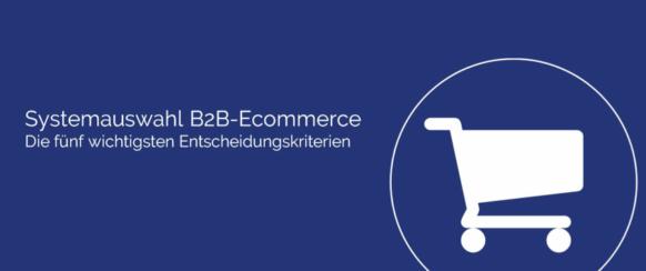 Tipps zur Auswahl eines B2B-Shopsysetm