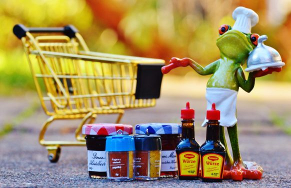 Frog with shopping cart