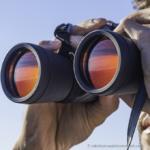 Fernglas - Ausblick auf die B2B e-Commerce Trends 2019