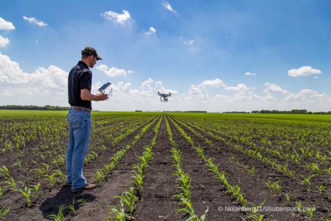 Digitalisierung Landwirtschaft, Bauer Tablet Drohne Feld, Quelle Nolanberg11
